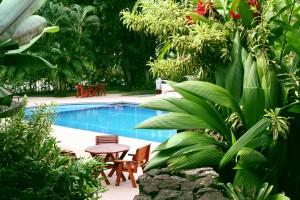 pool landscaping |